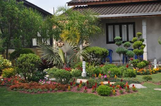 fotos de jardins urbanos : fotos de jardins urbanos: Foto:1º Lugar Jardim Urbano – Fotografo: Luana de Freitas – Data: 17